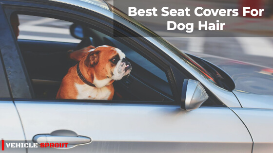 10 Best Seat Covers For Dog Hair 2021